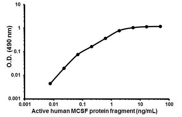 Cellular activation - Active human MCSF protein fragment (ab62015)