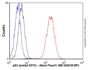 Flow Cytometry - Anti-p53 (acetyl K373) antibody [EP356(2)AY] (ab62376)