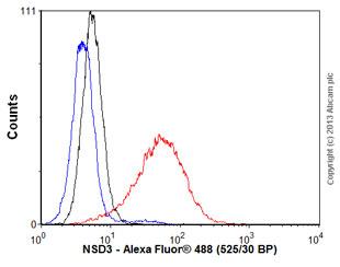 Flow Cytometry - Anti-NSD3 antibody [2E9] (ab66745)