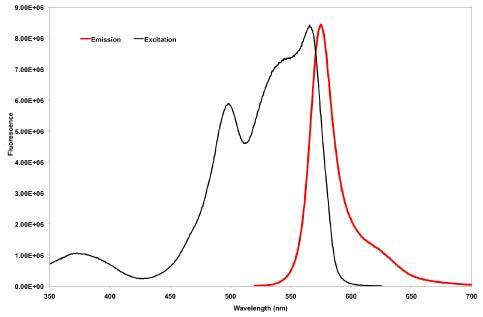 Flow Cytometry - Anti-c-Myc [9E10] antibody (Phycoerythrin) (ab72468)