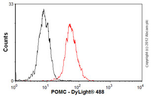 Flow Cytometry - Anti-POMC antibody [2F6H11] (ab73092)