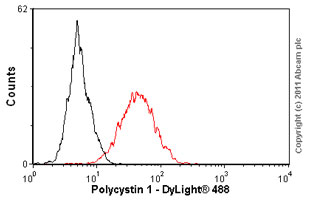 Flow Cytometry-Anti-Polycystin 1 antibody [7e12](ab74115)