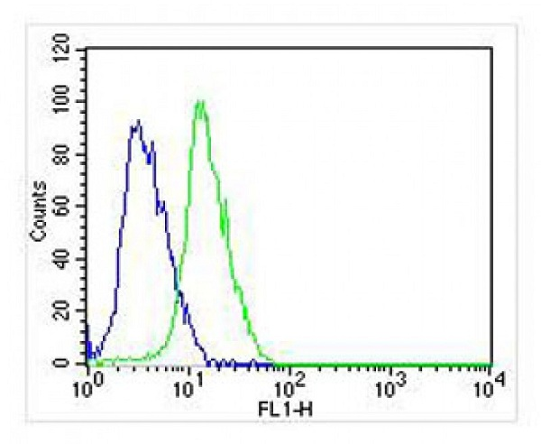 Flow Cytometry - Anti-GPCR GPR49 antibody (ab75732)