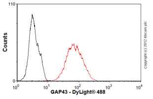 Flow Cytometry-Anti-GAP43 antibody [EP890Y](ab75810)
