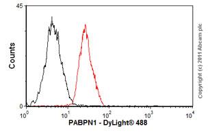 Flow Cytometry - Anti-PABPN1 antibody [EP3000Y] (ab75855)