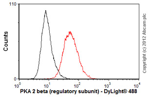 Flow Cytometry - Anti-PKA 2 beta (regulatory subunit) antibody [EP2649Y] (ab75993)
