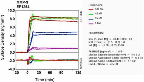 Other-Anti-MMP9 antibody [EP1254](ab76003)