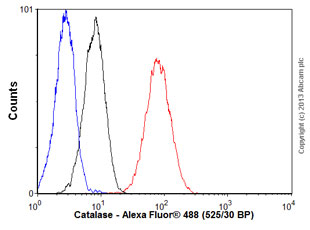 Flow Cytometry - Anti-Catalase antibody [EP1929Y] - Peroxisome Marker (ab76024)