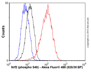 Flow Cytometry - Anti-Nrf2 (phospho S40) antibody [EP1809Y] (ab76026)