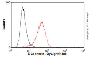 Flow Cytometry - Anti-E Cadherin antibody [M168] (ab76055)