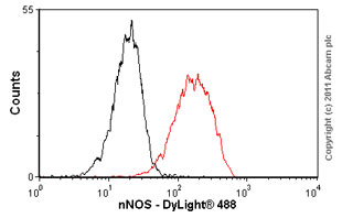 Flow Cytometry - nNOS (neuronal) antibody [EP1855Y] (ab76067)