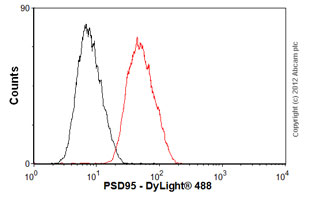Flow Cytometry-Anti-PSD95 antibody [EP2652Y](ab76115)