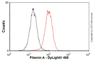 Flow Cytometry - Anti-Filamin A antibody [EP2405Y] - Carboxyterminal end (ab76289)