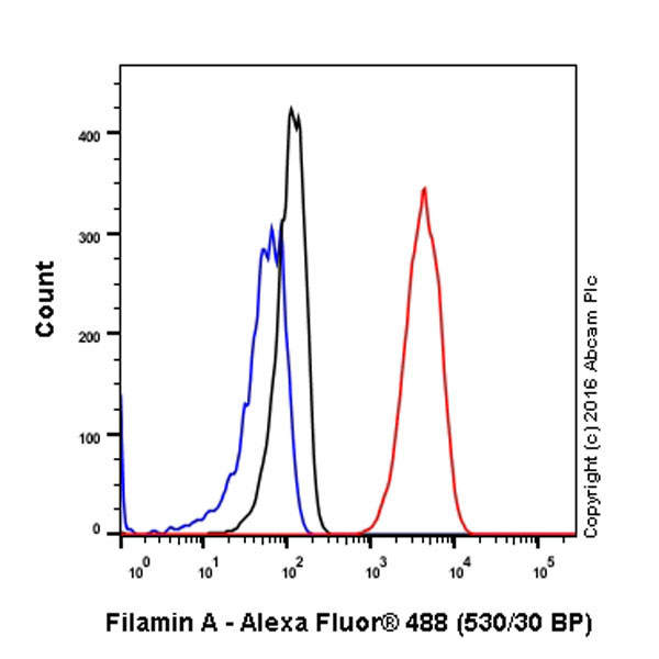 Flow Cytometry - Anti-Filamin A antibody [EP2405Y] (ab76289)