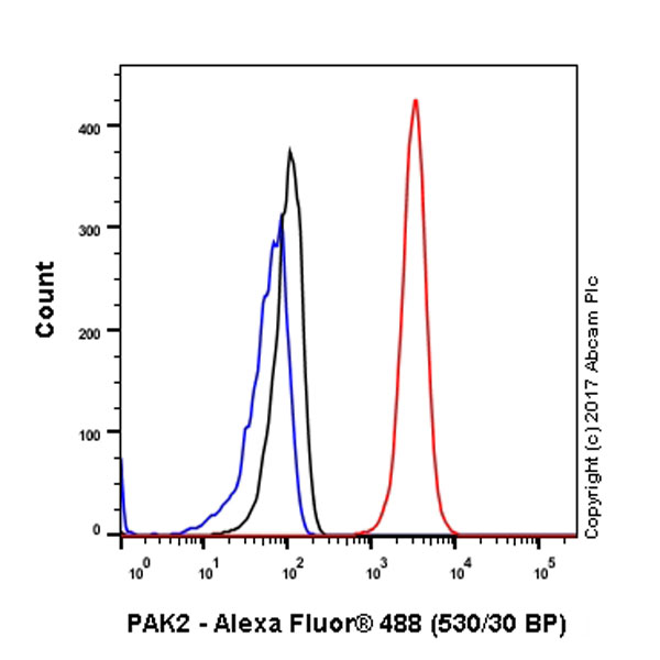 Flow Cytometry - Anti-PAK2 antibody [EP796Y] (ab76293)