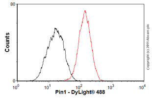 Flow Cytometry - Anti-Pin1 antibody [EP1479Y] (ab76309)