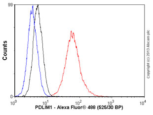 Flow Cytometry - Anti-PDLIM1 antibody (ab77142)