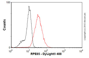 Flow Cytometry-Anti-RPE65 antibody [401.8B11.3D9] - Azide free(ab78036)