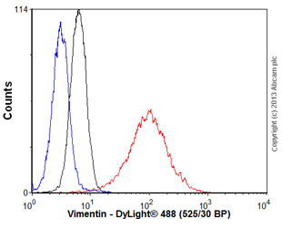 Flow Cytometry - Anti-Vimentin antibody [VI-10] (ab78111)