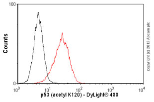 Flow Cytometry - Anti-p53 (acetyl K120) antibody [10E5] (ab78316)