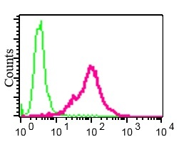 Flow Cytometry - Anti-Securin antibody [EPR3240] (ab79546)