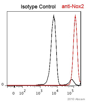 Flow Cytometry - Anti-NOX2/gp91phox antibody (ab80508)