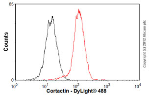 Flow Cytometry-Anti-Cortactin antibody [EP1922Y](ab81208)
