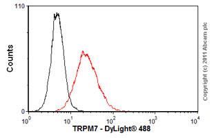 Flow Cytometry - Anti-TRPM7 antibody [S74-25] (ab85016)