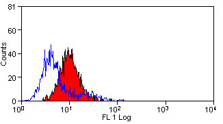 Flow Cytometry - Anti-TREM1 antibody [L5-B8.2A12.3A12] (ab86256)