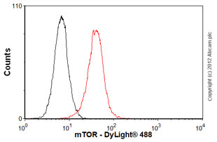 Flow Cytometry-Anti-mTOR antibody [53E11](ab87540)