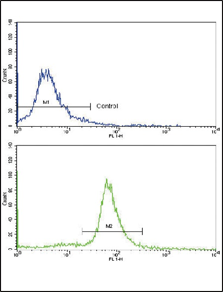 Flow Cytometry - Anti-Ornithine Carbamoyltransferase antibody (ab91418)