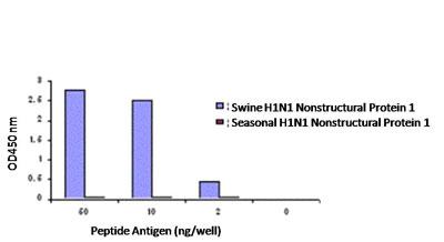 ELISA - Anti-Swine H1N1 Nonstructural Protein 1 antibody (ab91647)