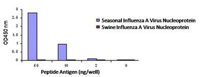 ELISA - Anti-Influenza A Virus Nucleoprotein antibody (ab91648)