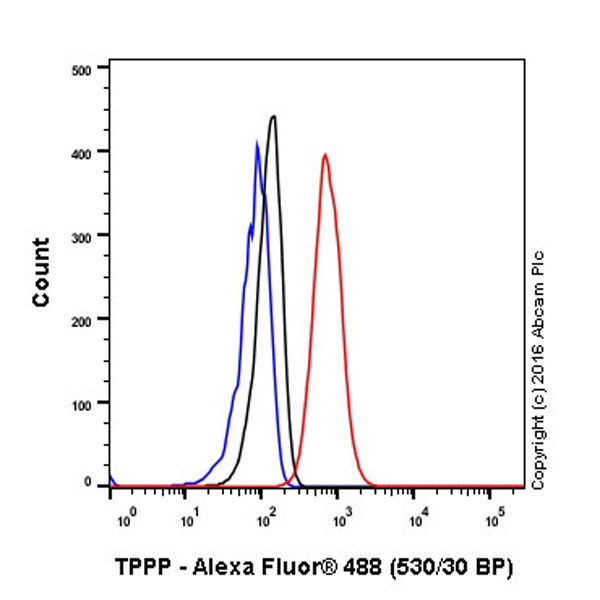 Flow Cytometry - Anti-Tubulin Polymerization Promoting Protein antibody [EPR3316] (ab92305)