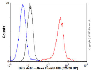 Flow Cytometry - Anti-beta Actin antibody [BA3R] (ab92436)
