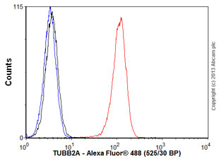 Flow Cytometry - Anti-TUBB2A antibody (ab92857)
