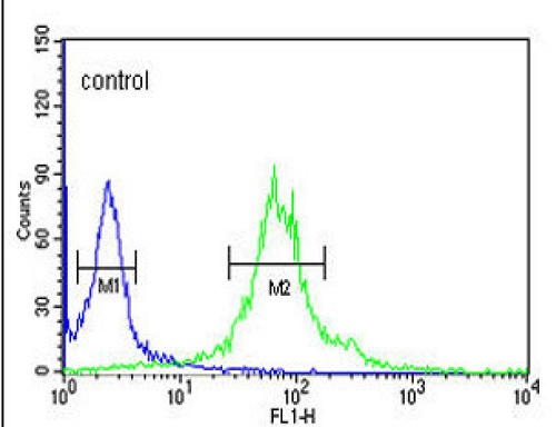 Flow Cytometry - Anti-IPO11 antibody - N-terminal (ab93475)