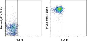 Flow Cytometry - Anti-MHC class I antibody [AF6-88.5.5.3] (Biotin) (ab93528)