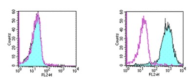 Flow Cytometry - Anti-TWEAKR antibody [ITEM-4] (Biotin) (ab93554)