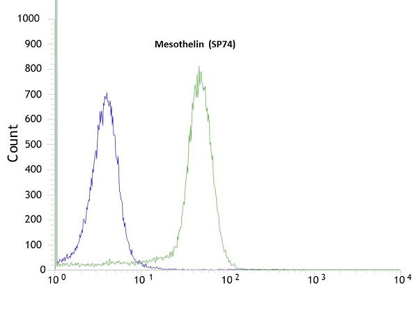 Flow Cytometry - Anti-Mesothelin antibody [SP74] (ab93620)