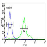 Flow Cytometry - Anti-CYP27B1 antibody (ab95047)