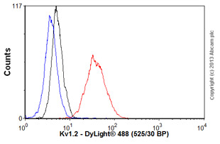 Flow Cytometry - Anti-Kv1.2 antibody [S14-16] (ab98970)