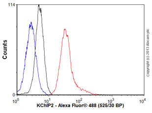 Flow Cytometry - Anti-KChIP2 antibody [S60-73] (ab99041)