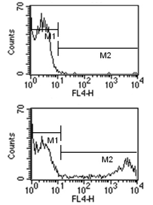 Flow Cytometry - Rat monoclonal [1B4B1]  Secondary Antibody to Mouse IgM - mu chain (Allophycocyanin) (ab99597)